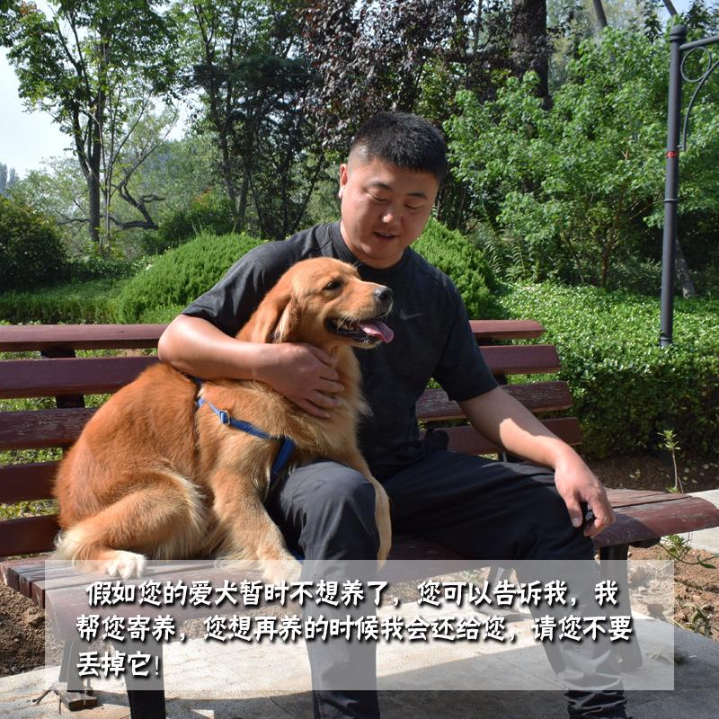 狗粮泰迪比熊贵宾博美小中大型犬粮牛肉粮成幼犬粮通用型包邮30斤优惠券