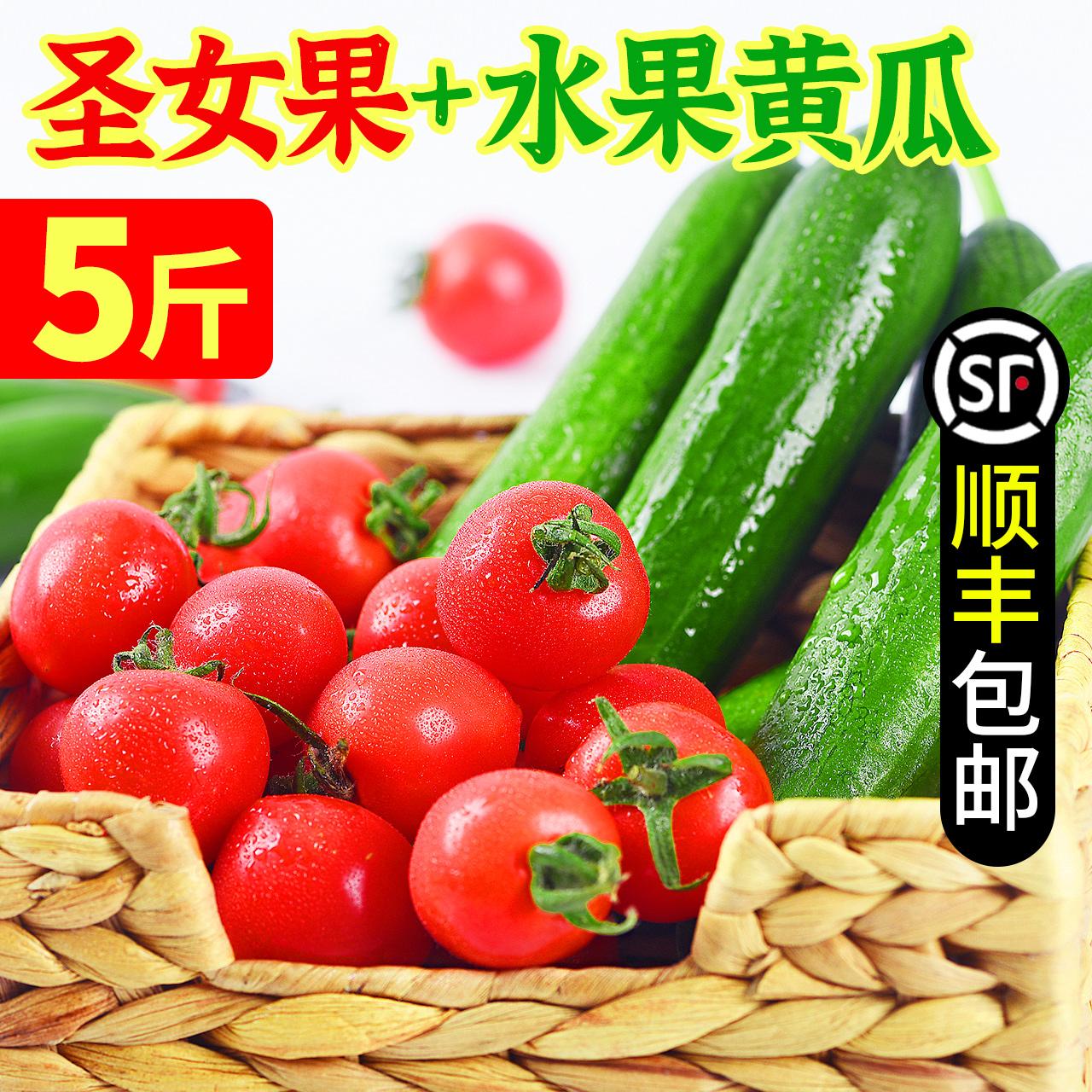 鲜圣女果小黄瓜5斤组合混装小番茄西红柿农家蔬菜水果小黄瓜包邮