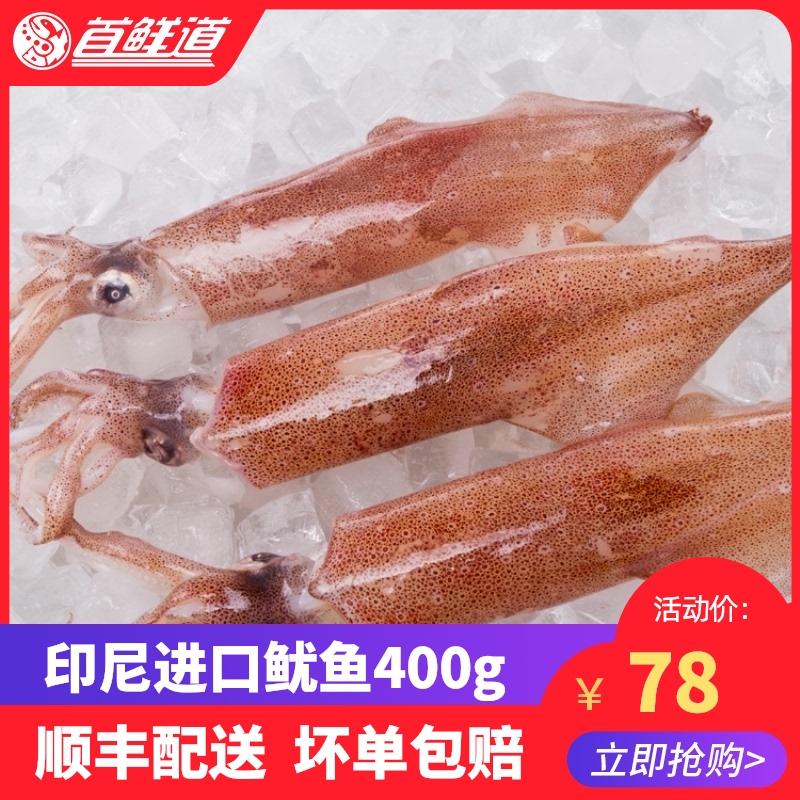 印尼进口超大鱿鱼冷冻新鲜尤鱼整只400g/3条海鲜水产笔管鱼生鲜