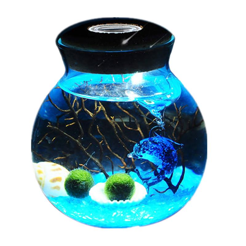 送女朋友办公室礼物什么好?海藻球微景观生态瓶