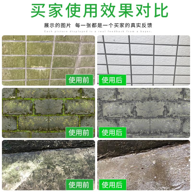 杀青苔去除剂净霉菌水清除液苔藓清洁液水泥地面冷却塔杀菌灭藻剂