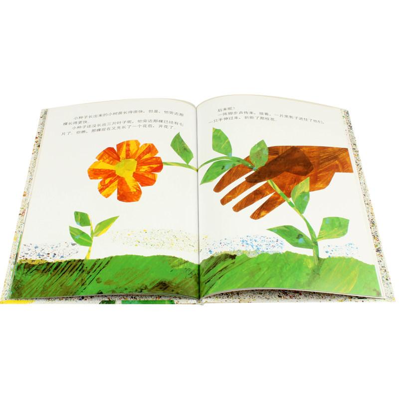 歲繪本故事早教啟蒙經典版漫畫文學讀物 10 7 6 5 4 3 2 0 嬰兒寶寶少兒幼兒童繪本 精裝 信誼世界精選圖畫書小種子 正版包郵