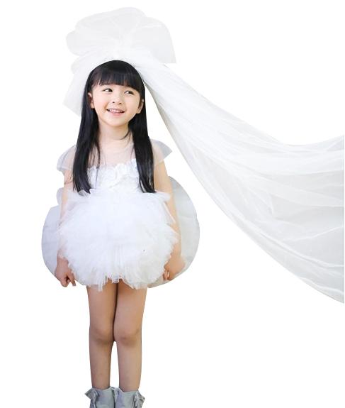 韩版秋新童装公主裙女童连衣裙周岁生日礼服表演裙走秀花童蓬蓬裙