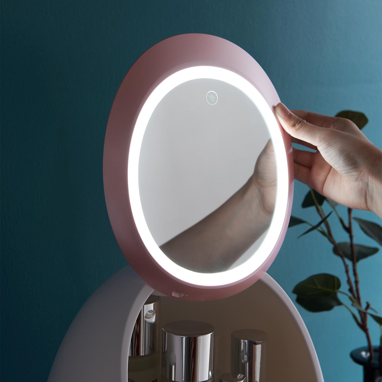 化妆品收纳盒防尘便携抖音同款带LED镜子护肤品口红收纳盒置物架