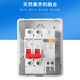 Delixi Genuine 1P Air Switch 2P Leakage Protector Small Circuit Breaker with Ming Assembly Electric Box 4 Circuits
