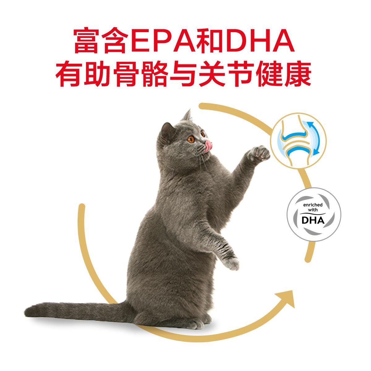 皇家BS34英短成猫粮2KG室内猫英国短毛蓝猫专用营养增肥发腮优惠券