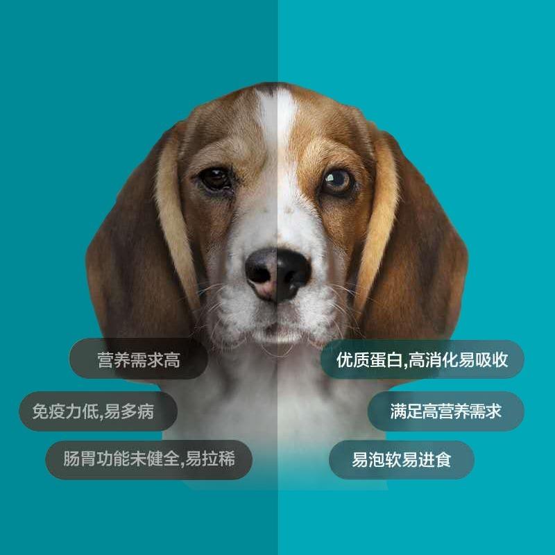 畅宠燕麦果蔬奶糕狗粮通用型泰迪比熊金毛幼成犬大小型犬5斤包邮优惠券