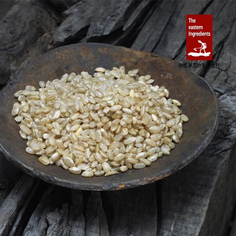 五谷杂粮饭农家纯天然大米胚芽米健身代餐玄米250g免邮糙米新米