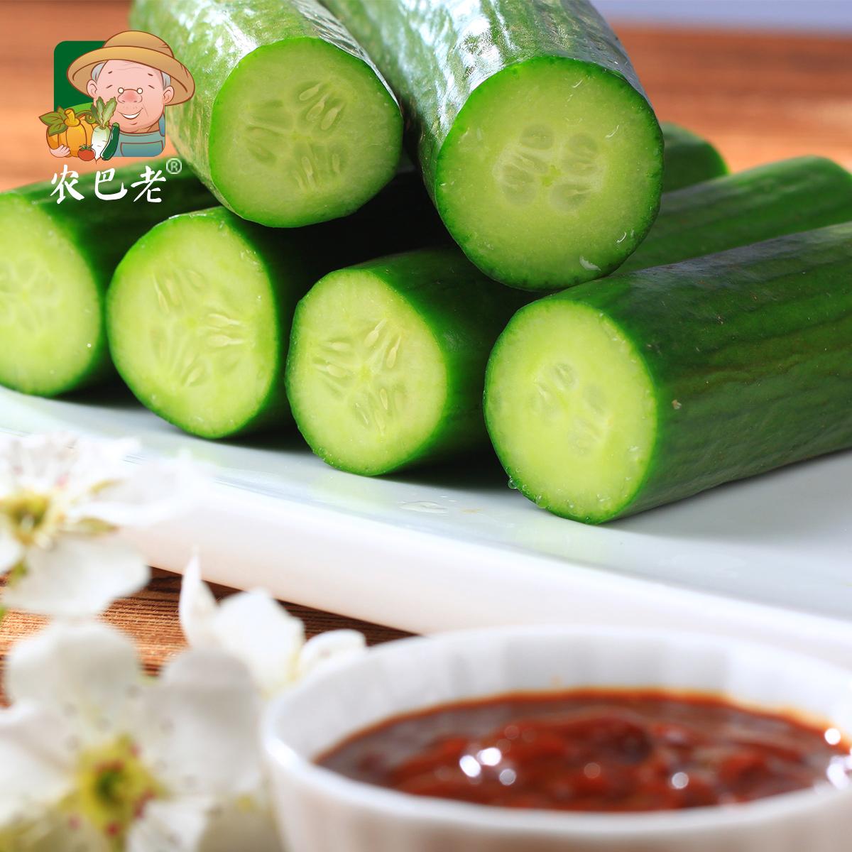 水果小黄瓜新鲜水果蔬菜无刺荷兰小黄瓜小青瓜可生吃现摘5斤装