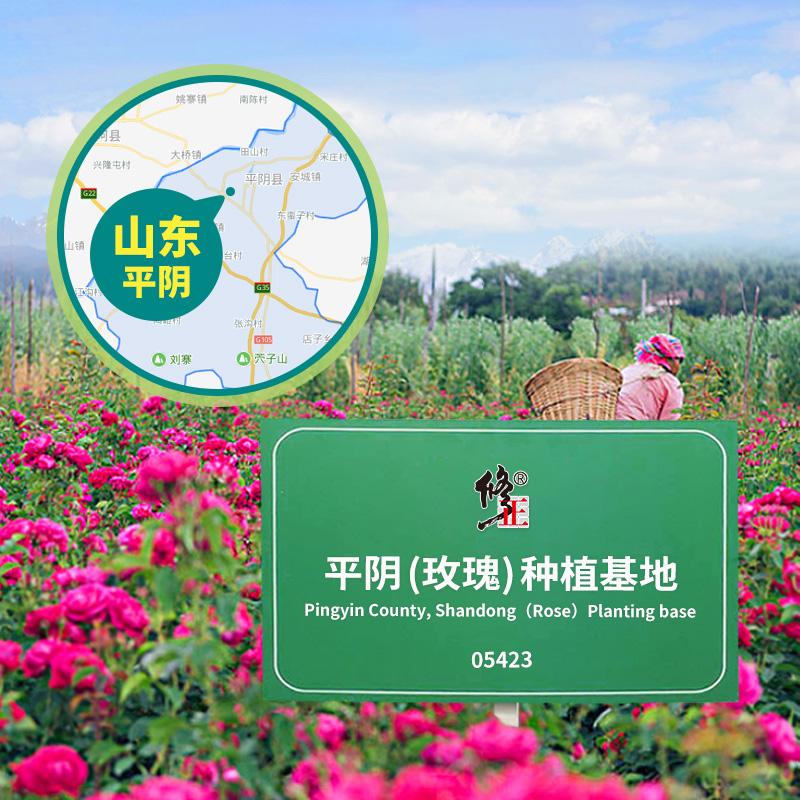 整朵玫瑰花冠茶非特价新花天然大朵干玫瑰 罐装修正平阴玫瑰花茶 3