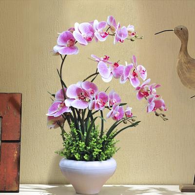 蝴蝶兰仿真花摆件套装花瓶盆栽绢花塑料假花家居客厅花卉装饰摆设 - 图0