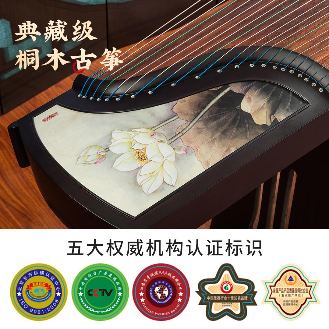 163CM 朗艺古筝初学者教学专业演出入门古筝琴桐木十级考级乐器