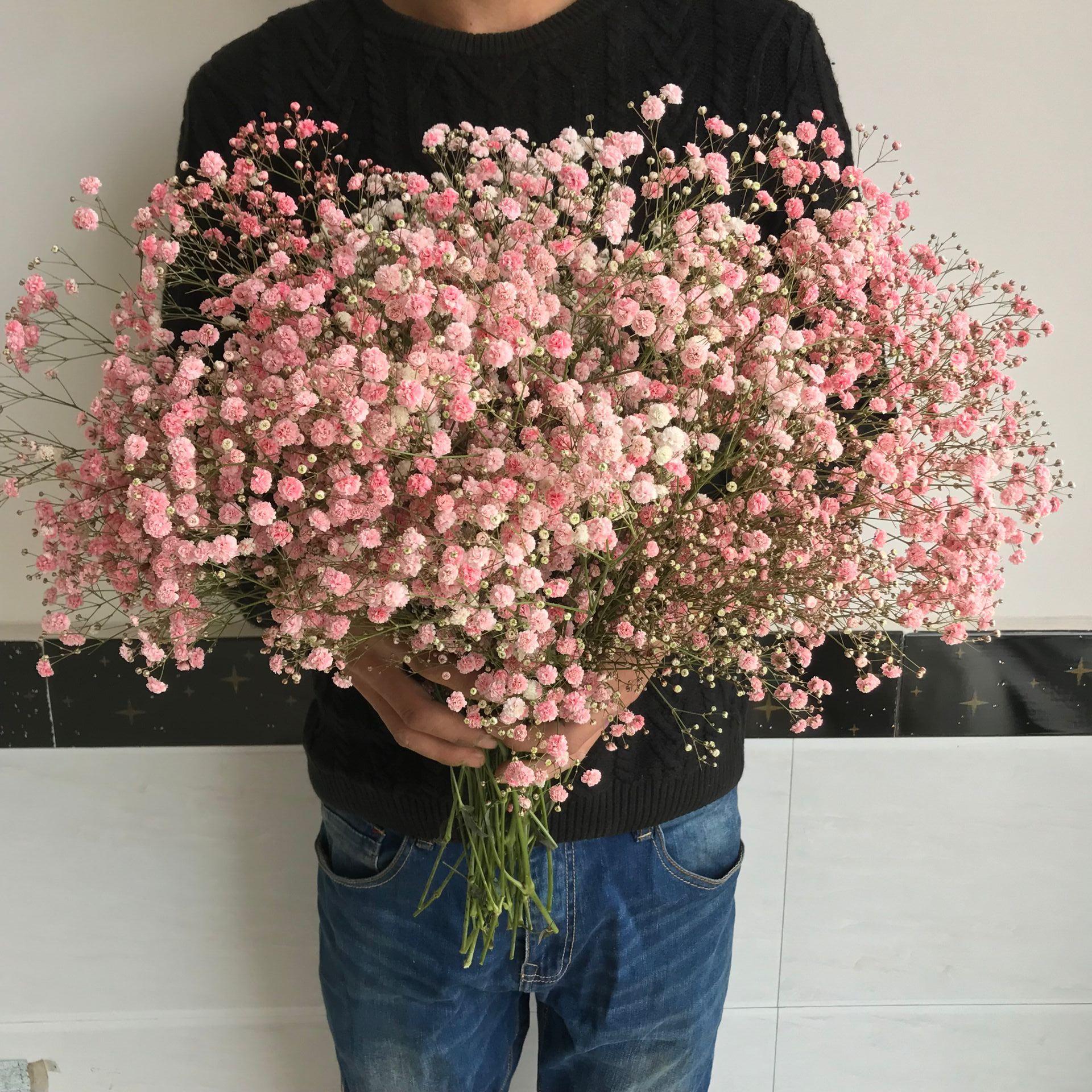 满天星勿忘我干花花束家居摆设客厅装饰摆件永生花鲜花情人节大束