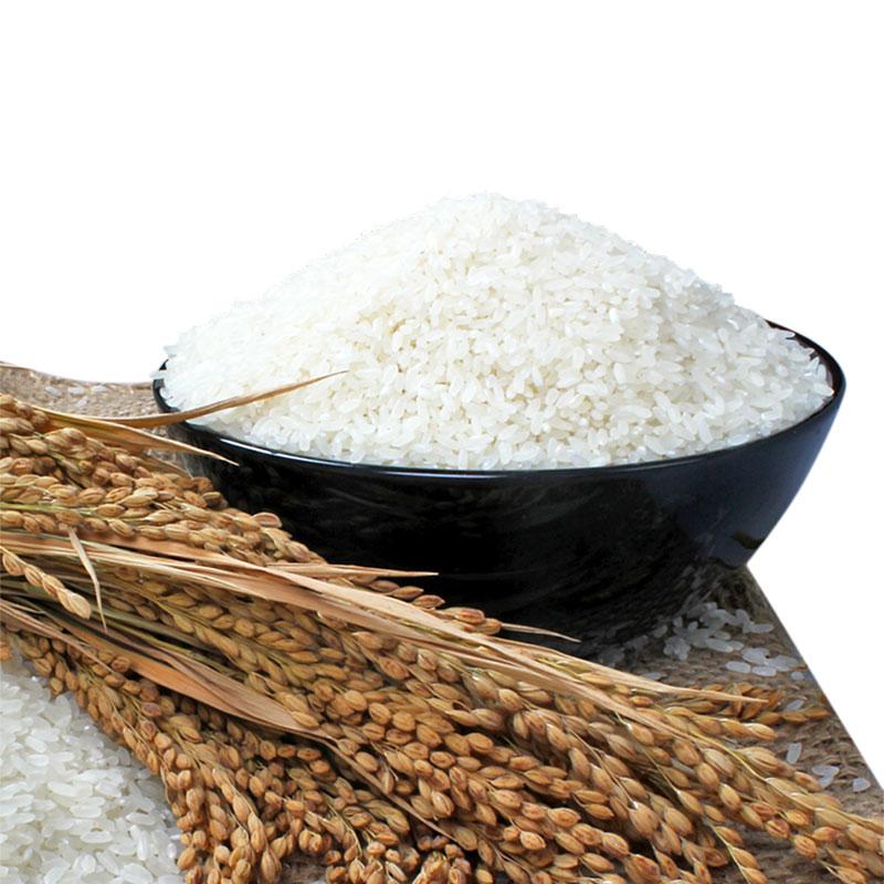 2018年新米东北大米黑龙江五常大米稻花香米农家鸭稻米5KG装包邮
