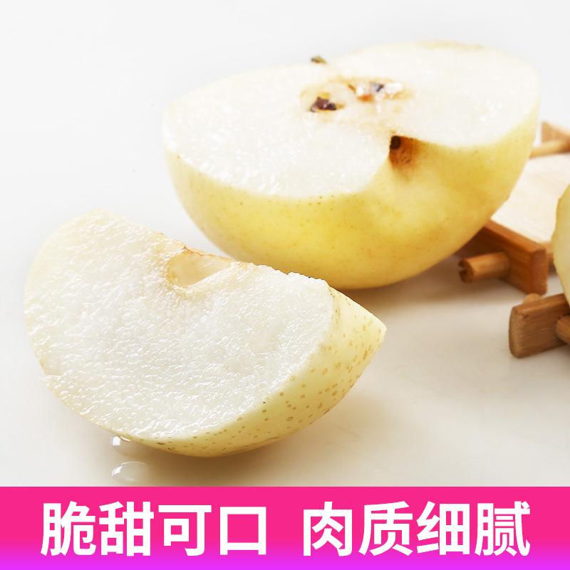 梨子皇冠梨雪梨新鲜水果梨子整箱10斤包邮当季砀山梨香梨苹果梨梨