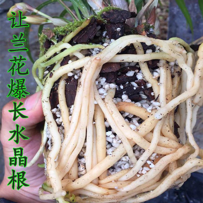 兰花土专用土绿植透气铁皮石斛蝴蝶兰植料多肉土花卉君子兰营养土
