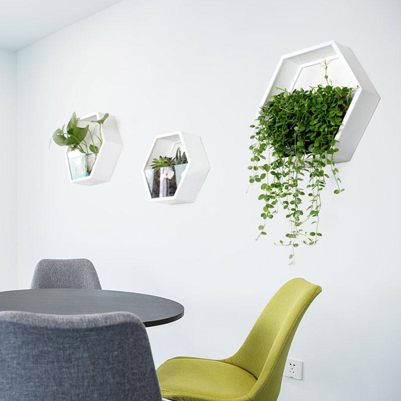 家居客厅墙面装饰品田园墙壁装饰挂件水培植物绿萝创意壁挂花盆