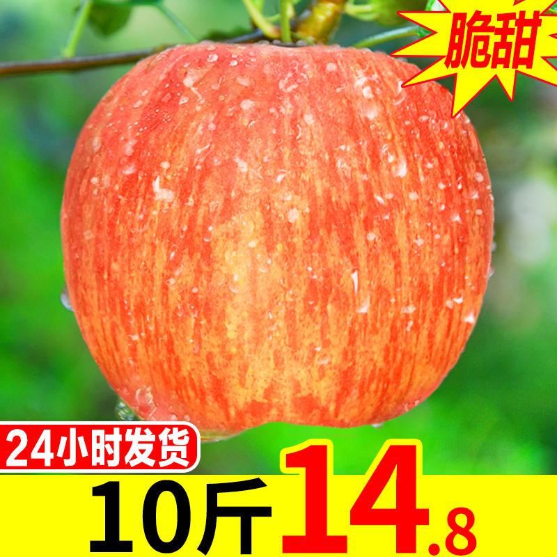 红富士苹果10斤水果新鲜当季整箱陕西现摘包邮一冰糖心丑苹果应季
