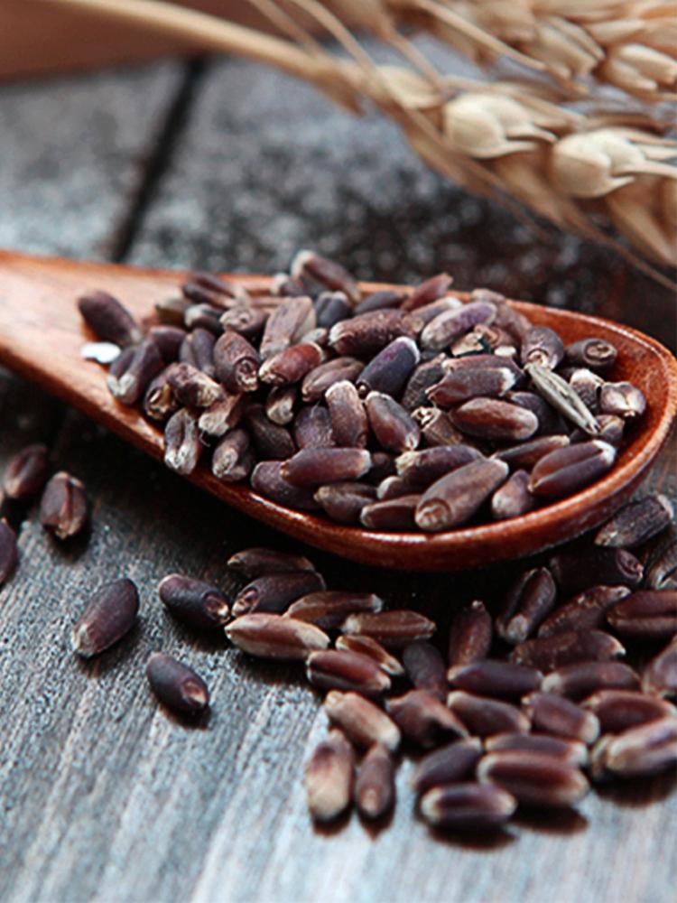 新良营养褐麦粉2500g 中筋面粉 小麦粉 面粉面条馒头包子粉褐麦粉