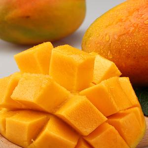 拍2件10斤攀枝花凯特香甜大芒果