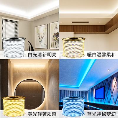 led灯带客厅家用超亮吊顶七彩色跑马氛围软灯条防水三色线灯220v