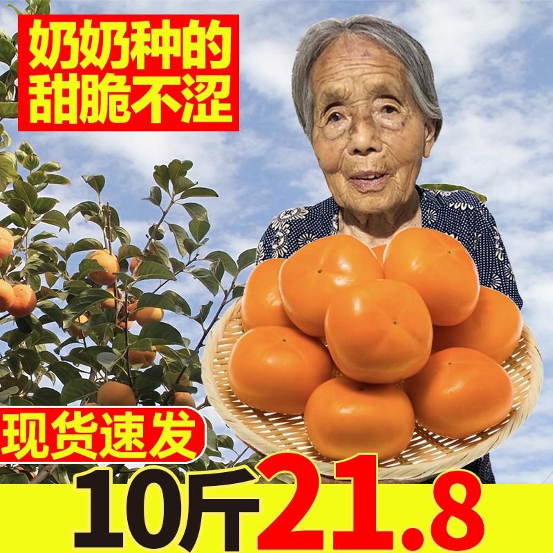 脆柿10斤脆甜硬柿子大果当季应季新鲜水果5整箱巧克力脆皮脆柿子