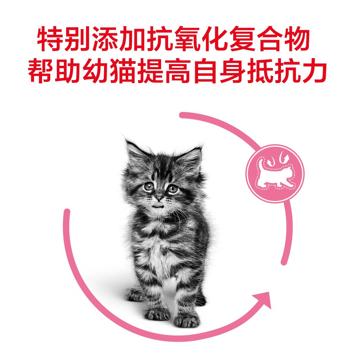 皇家幼猫奶糕猫粮BK34小猫幼猫粮400gx2离乳期1-4月营养增肥 发腮优惠券
