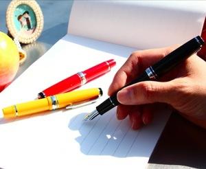 写乐 SAILOR 14K钢笔 练字 MINI NAGASAWA风见鸡限定版 钢笔