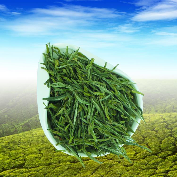 家庭装手工炒制包邮送罐 500g 年新茶雨前霍山黄芽春茶茶叶黄茶 2018