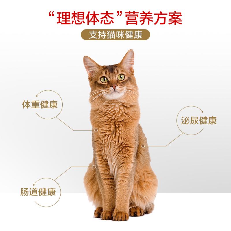 皇家猫粮F32营养成猫猫粮英短蓝猫美短布偶成猫通用粮/2KG*2优惠券