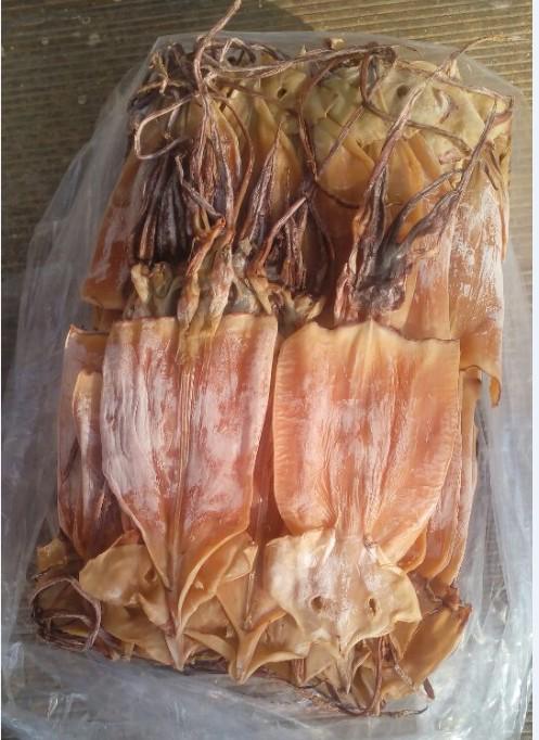渔家自晒咸味鱿鱼干海鲜干货 干鱿鱼 鱿鱼片 鱿鱼板500g 2件包邮