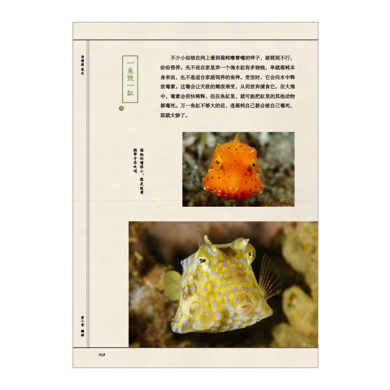 海错图笔记正版小学书单中信出版发货 中国国家地理