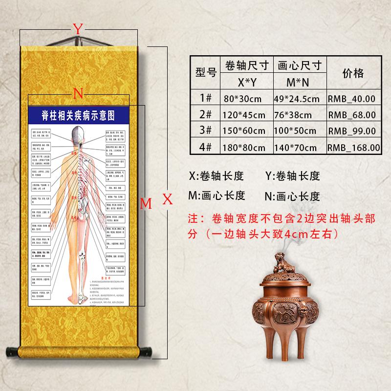 人體脊柱相關疾病示意圖全息中醫養生文化宣傳醫院養生館卷軸掛圖