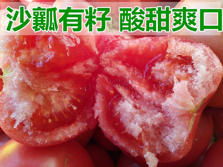现摘沙瓤自然熟西红柿新鲜纯天然番茄水果孕妇儿童绿色蔬菜5斤