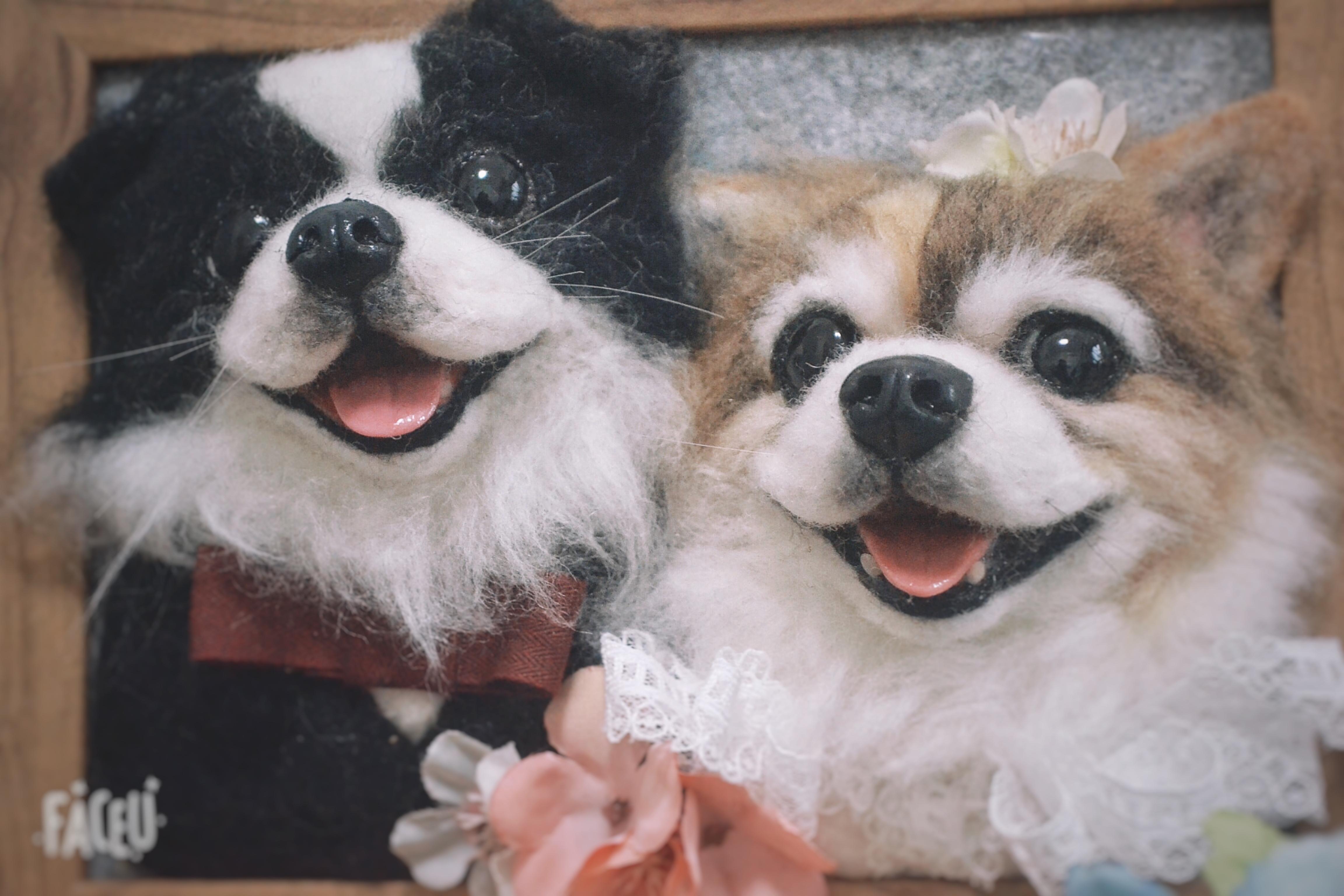 包邮羊毛毡手作照片立体仿真宠物狗猫生日纪念创意礼物定制相框