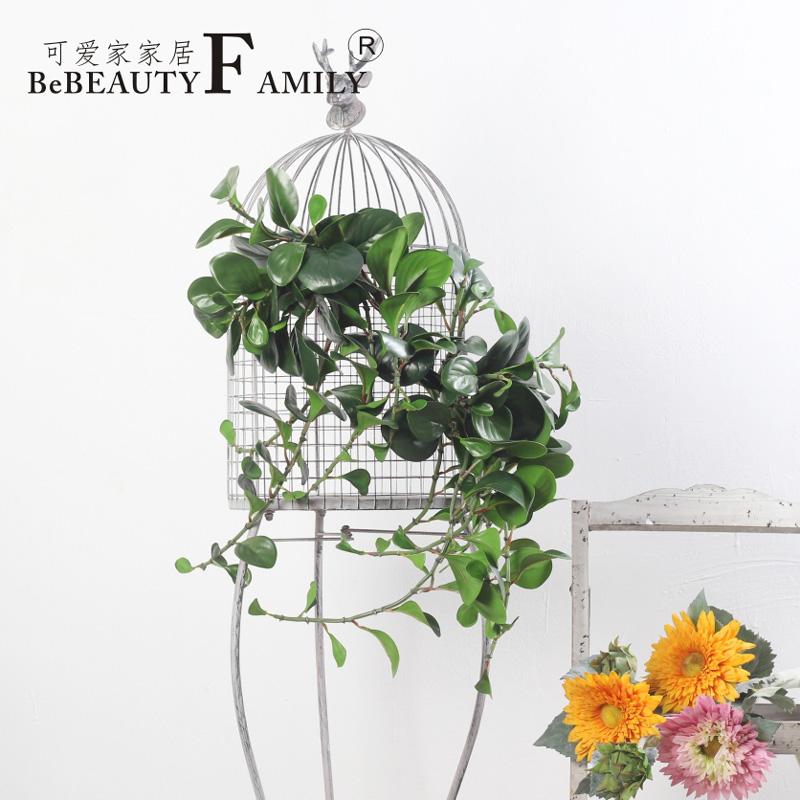 Buy Lovely home contadino douban.com green radish leaves the