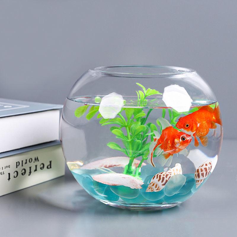 鱼缸透明玻璃办公桌创意客厅圆形龟缸小型乌龟迷你桌面金鱼小鱼缸