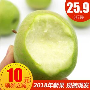 当季酸甜青苹果水果5斤包邮新鲜 整箱现摘现发非富士青苹果