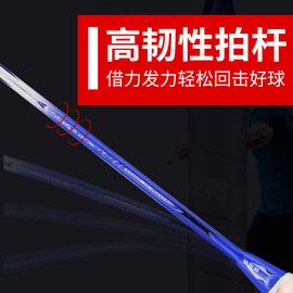 迪科斯羽毛球拍双拍 2支装碳素拍成人初学正品超轻训练拍套装