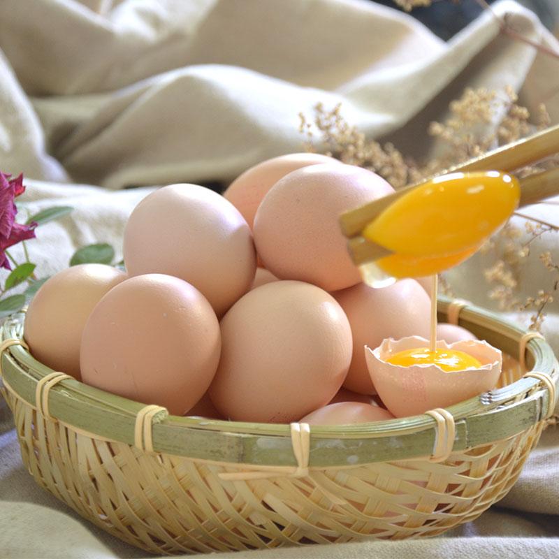 国企首农集团旗下,个头小 营养高:60枚 百年栗园 新鲜柴鸡土鸡蛋