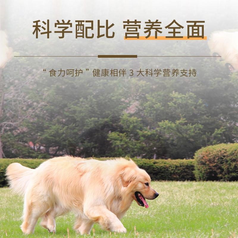 新款狗粮通用型泰迪金毛萨摩耶哈士奇10斤20斤成犬幼犬大型犬小型优惠券