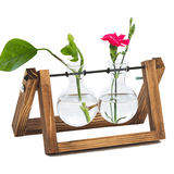 Like a flower blooming creative green dill plant hydroponic flower frame glass transparent small vase office desktop decoration ornaments