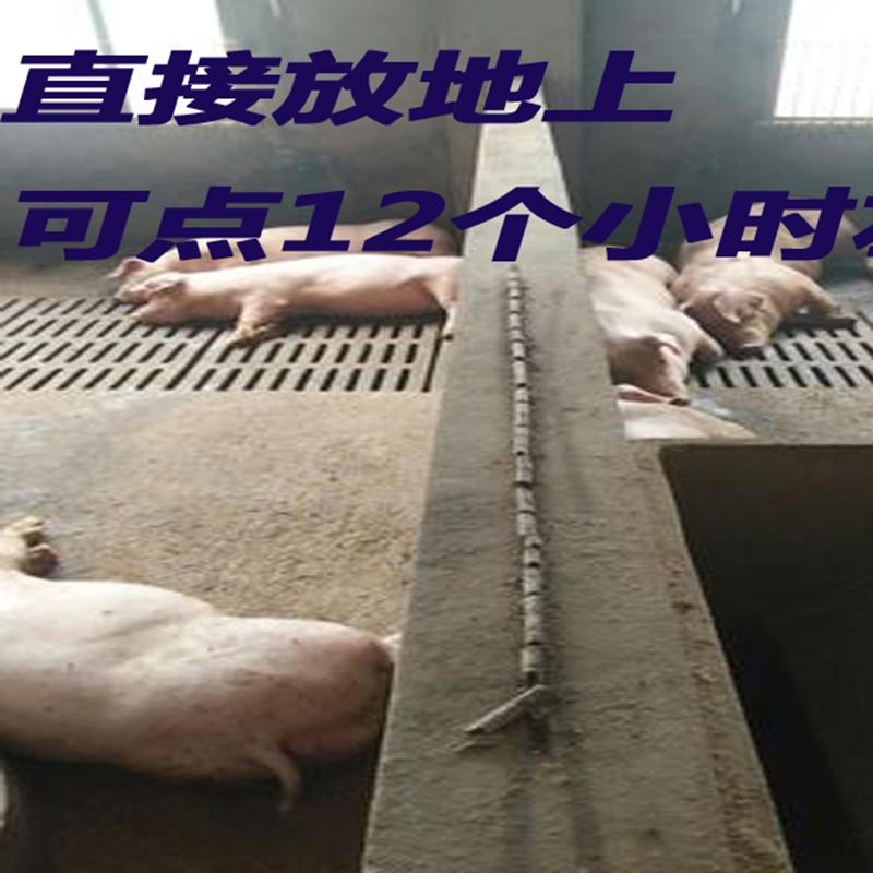 猪厂场专用畜牧兽用蚊香特效灭蚊棒苍蝇户外驱蚊包邮促销整箱批发