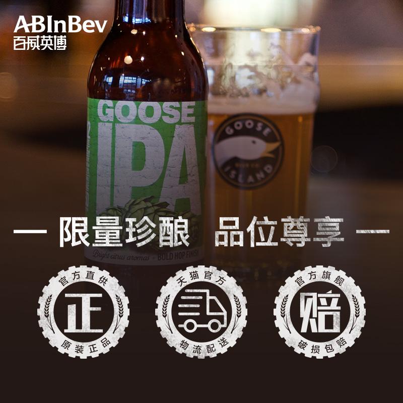 瓶装 12 印度淡色艾尔精酿啤酒整箱全家福组合 IPA 开巴 拳击猫 鹅岛