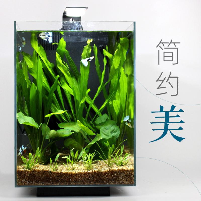 阿诺比自循环生态鱼缸小型造景套餐家用客厅北欧风办公桌面水族箱