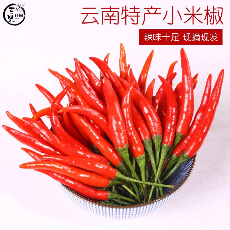 云南新鲜小米椒红辣椒特辣朝天椒小尖椒1斤小米辣新鲜蔬菜3件包邮