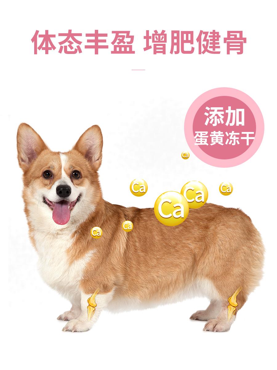 柯基犬专用狗粮 幼犬增肥粮科基狗亮美毛补钙20小奶糕成犬5kg10斤优惠券