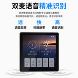 Host family background music system packages Ceiling Speaker Ceiling stereo home intelligent controller