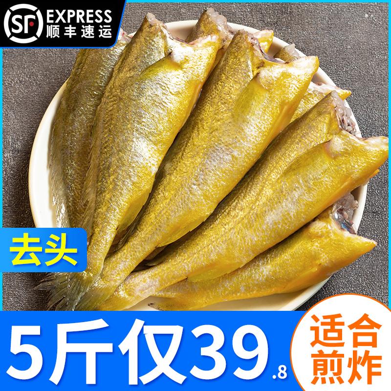 去头小黄花鱼黄鱼海鱼新鲜海鲜冷冻生鲜鱼类油炸香酥小黄鱼原料