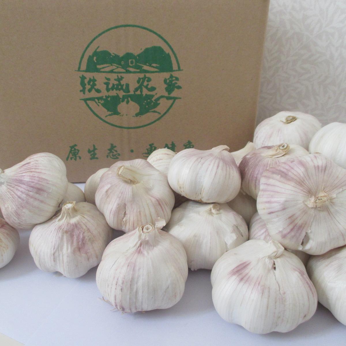 河南农家自种5斤带箱大蒜头2020年紫皮大蒜新鲜干蒜【图4】